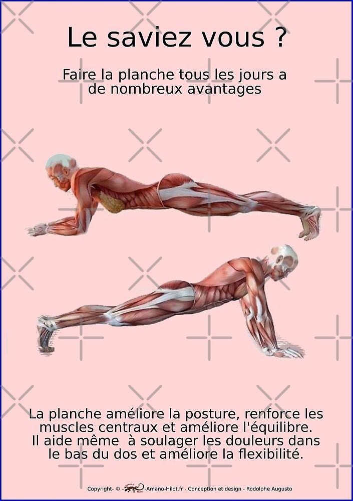 « Planches Musculo-squelettique des positions de Yoga - N°22 » par rodolphe Augusto