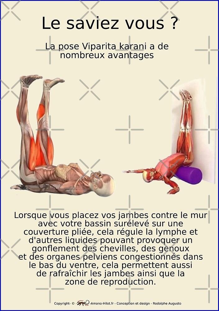 « Planches Musculo-squelettique des positions de Yoga - N°23 » par rodolphe Augusto