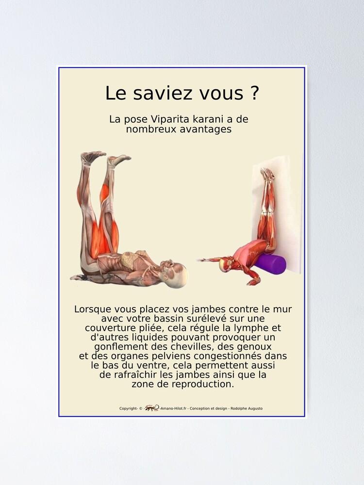 Poster ''Planches Musculo-squelettique des positions de Yoga - N°23': autre vue
