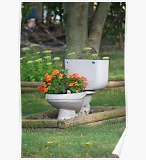 a flush of flowers Poster