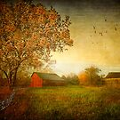 New England Seasons by Michael  Petrizzo