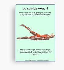 Planches Musculo-squelettique des positions de Yoga - N°26 Impression sur toile