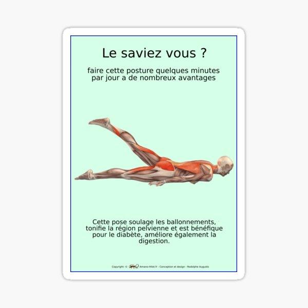 Planches Musculo-squelettique des positions de Yoga - N°26 Sticker