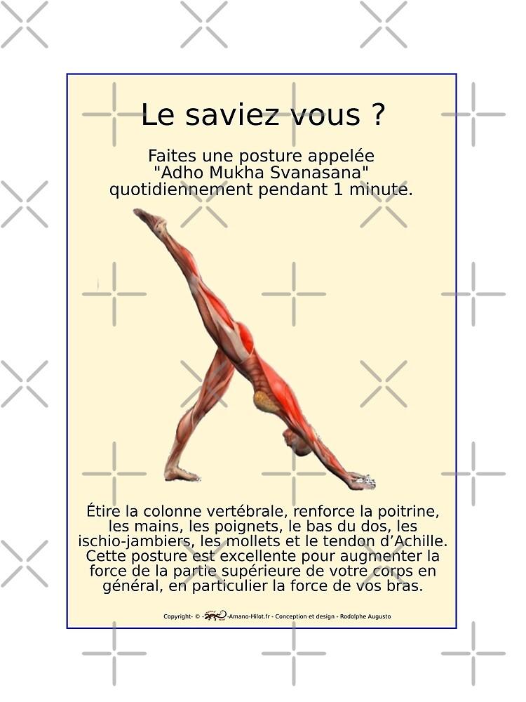 «Planches Musculo-squelettique des positions de Yoga - N°27» par rodolphe-a