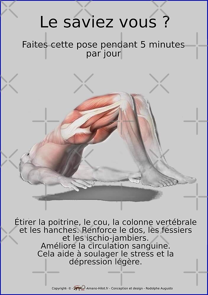 « Planches Musculo-squelettique des positions de Yoga - N°31 » par rodolphe Augusto