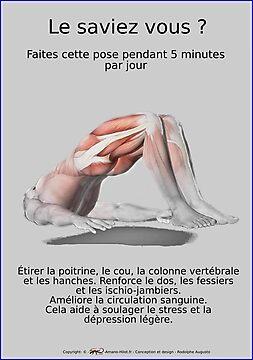 Planches Musculo-squelettique des positions de Yoga - N°31