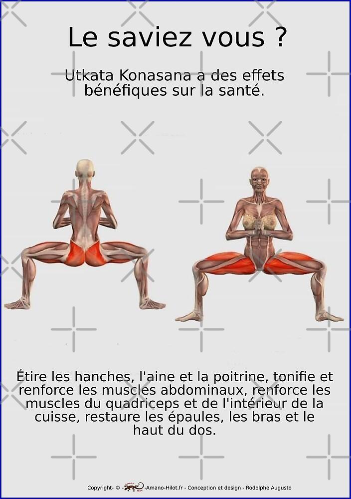 « Planches Musculo-squelettique des positions de Yoga - N°32 » par rodolphe Augusto