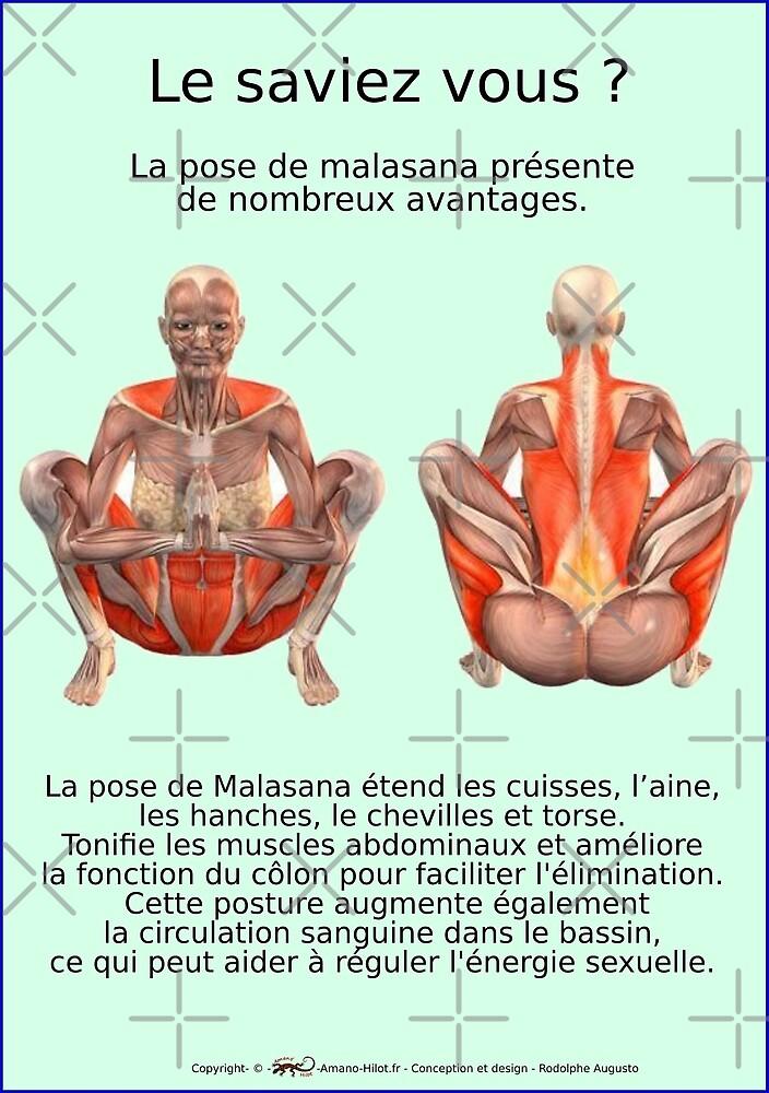 « Planches Musculo-squelettique des positions de Yoga - N°34 » par rodolphe Augusto