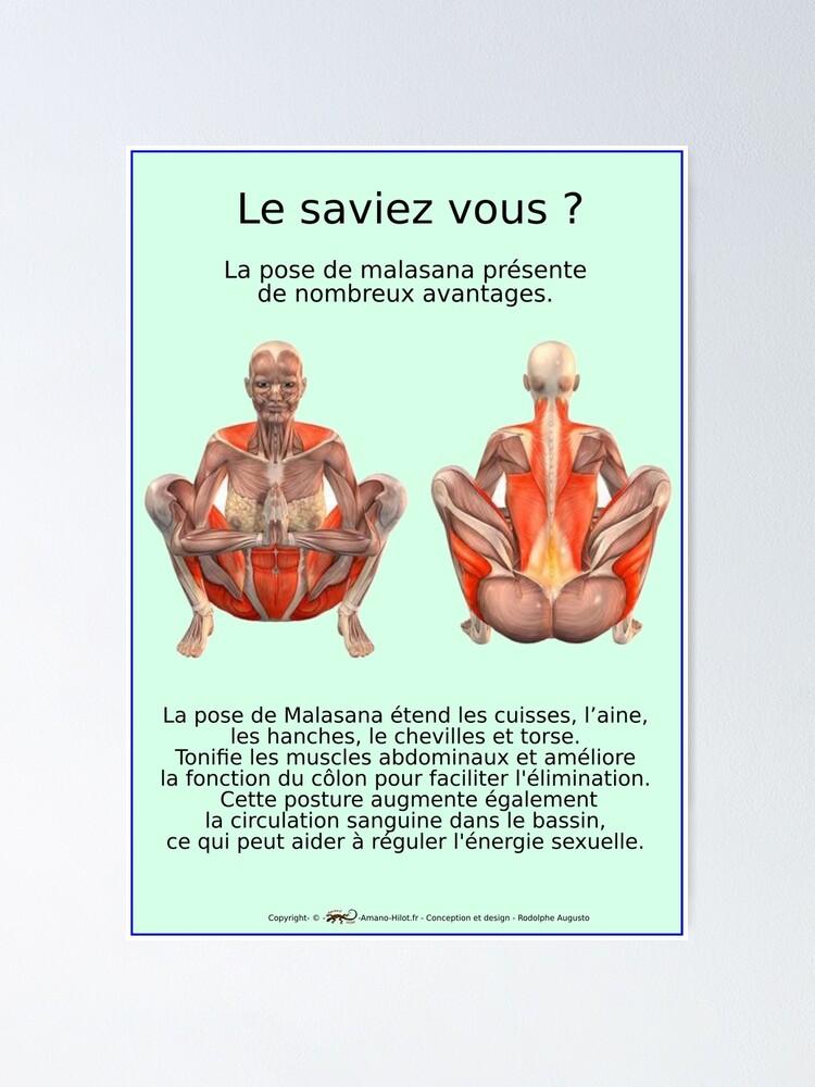 Poster ''Planches Musculo-squelettique des positions de Yoga - N°34': autre vue