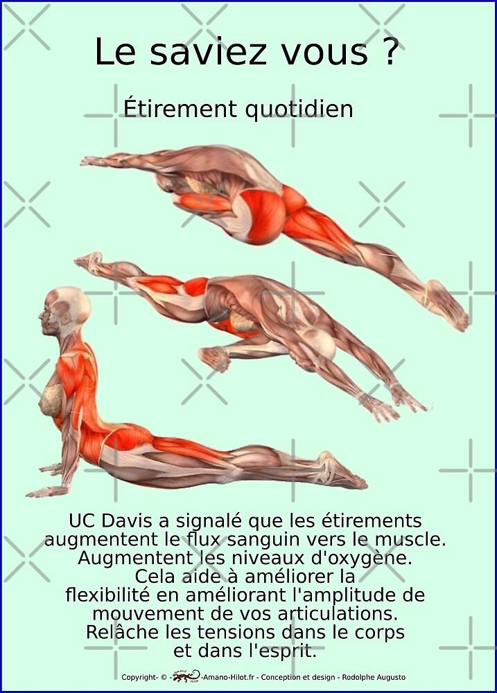« Planches Musculo-squelettique des positions de Yoga - N°35 » par rodolphe Augusto