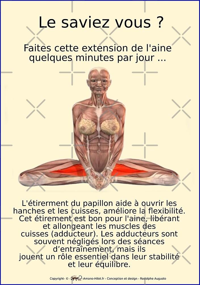 « Planches Musculo-squelettique des positions de Yoga - N°38 » par rodolphe Augusto