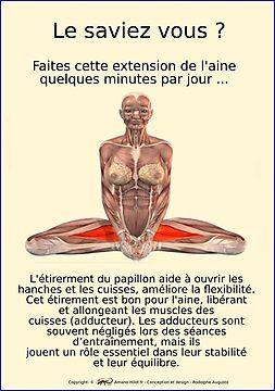 Planches Musculo-squelettique des positions de Yoga - N°38