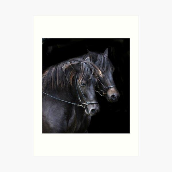 Ponies in the dark Art Print