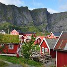 Reine by Annbjørg  Næss