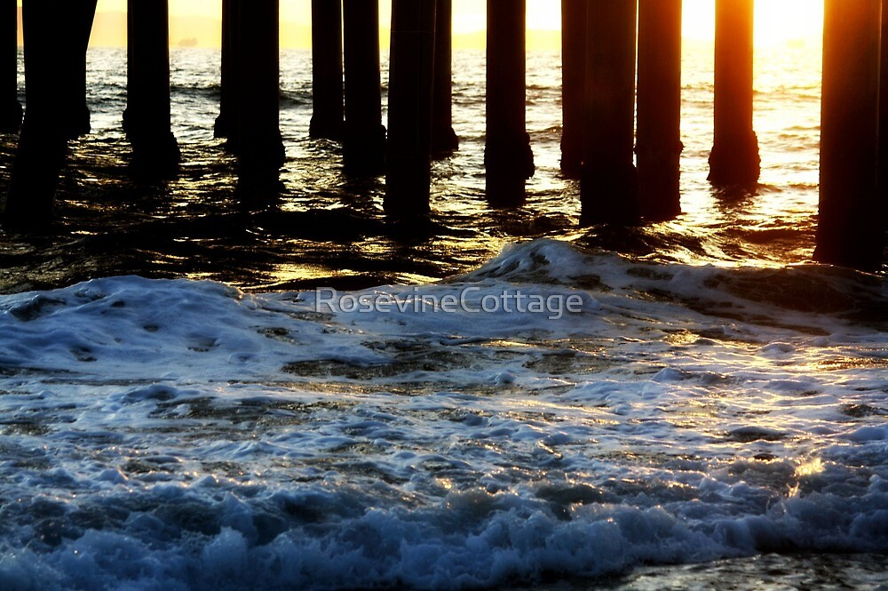 From Sea To Shining Sea by RosevineCottage
