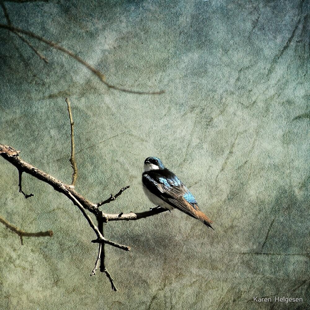 Tree Swallow... by Karen  Helgesen