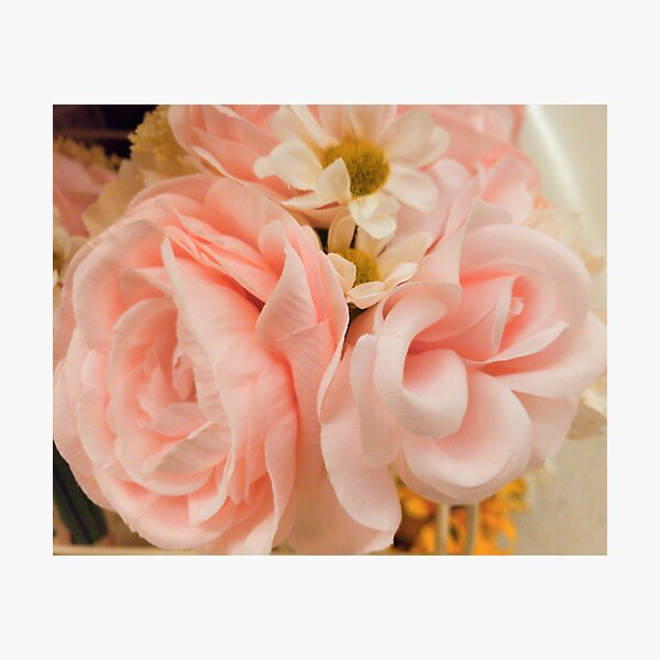 Delicate Pastel Pink Rose bouquet, Spring flowers,  Photographic Print