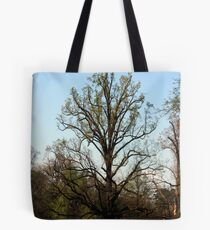 Proudly against the Sky Tote Bag