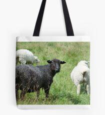 Ba Ba Black sheep  Tote Bag