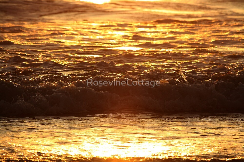 Liquid Gold  by RosevineCottage