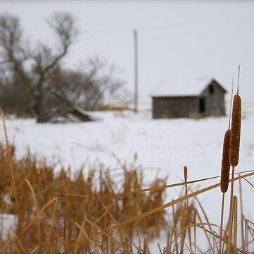 Saskatchewan Winter by raquelfletcher