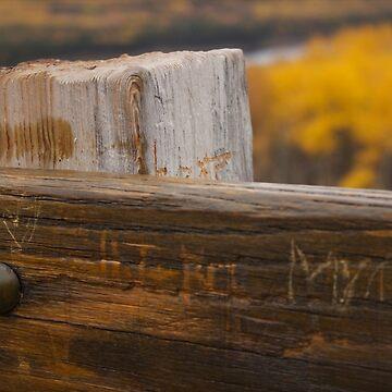 Marking Our Love in Waskesiu by raquelfletcher