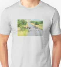 zebra crossing Unisex T-Shirt