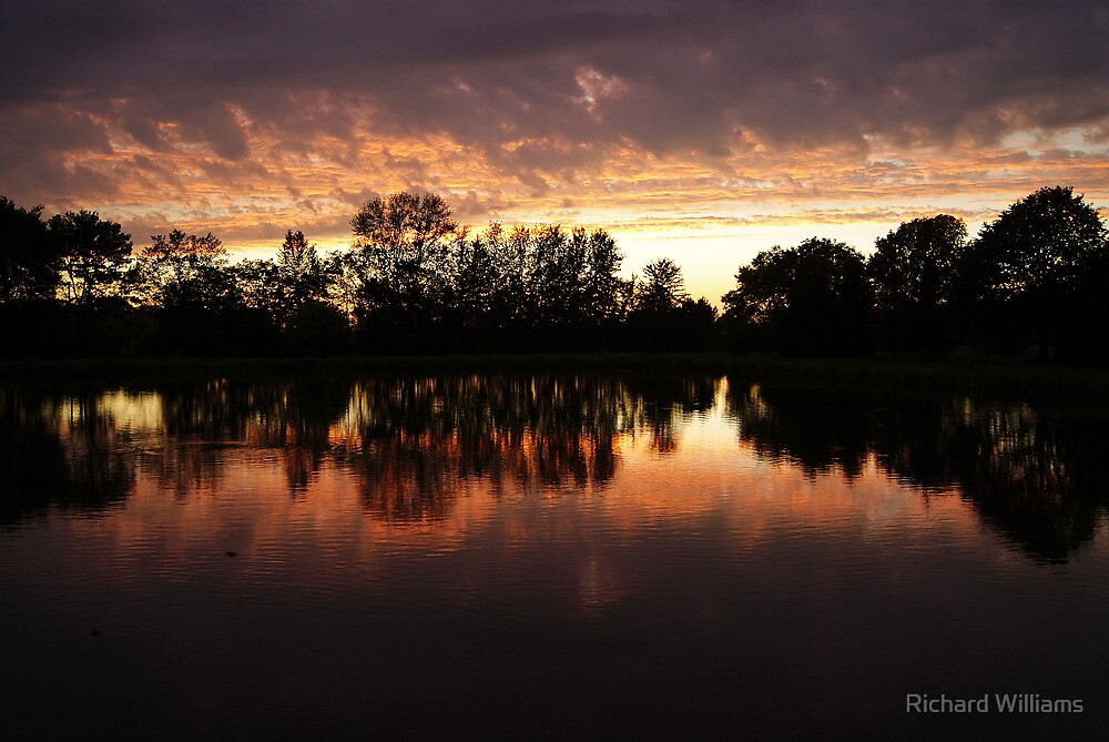 Glowing Reflections by Richard Williams