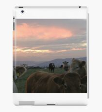 Cow sky Derry Ireland iPad Case/Skin