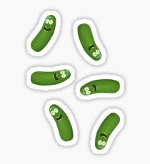 Pickle Riiiiick! Sticker