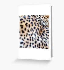 An eye amongst spots - Mala Mala South Africa Greeting Card