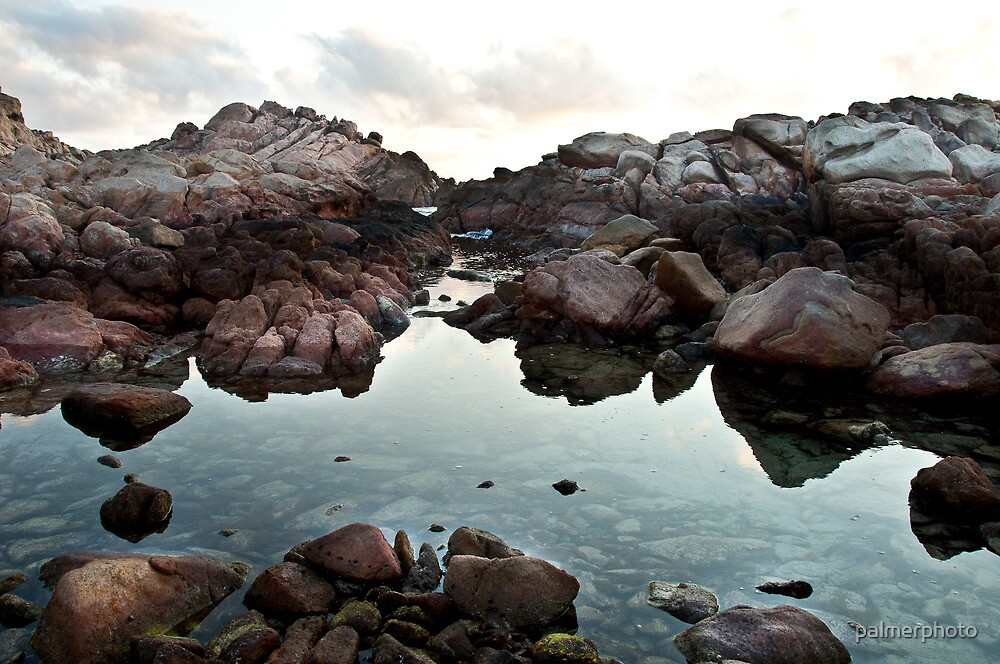 Rockpool by palmerphoto