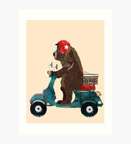scooter bear Art Print