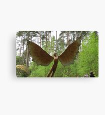 Icarus spreads his wings Canvas Print