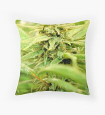 Club Purps Bud Throw Pillow