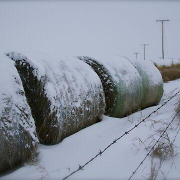 Saskatchewan Hay Bales  by raquelfletcher