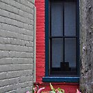 Window Howell by Sandra Guzman