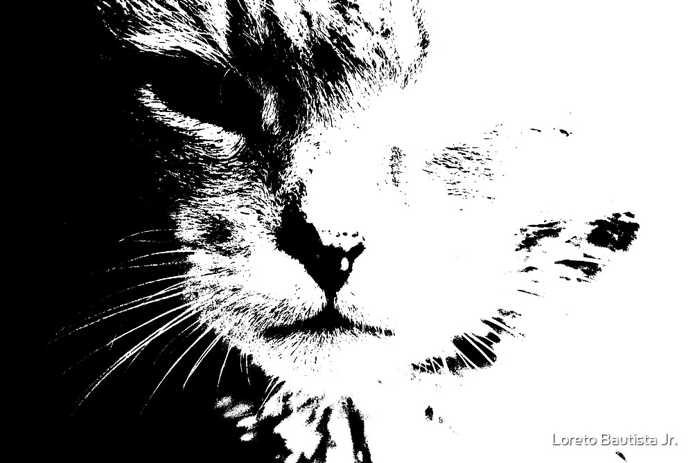 kitty kat by Loreto Bautista Jr.