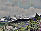Digital Art, Colorado Rockys by NatureGreeting Cards ©ccwri