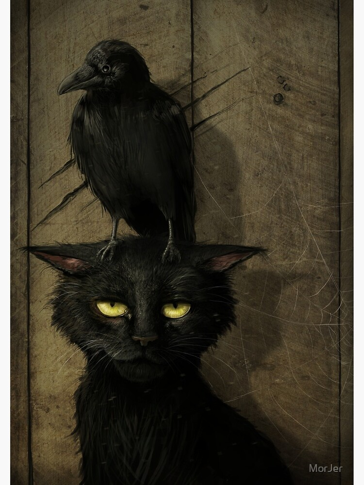 The Raven and the Cat by MorJer