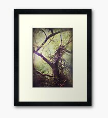 Arms That Reach For Me Wild and Free Framed Print