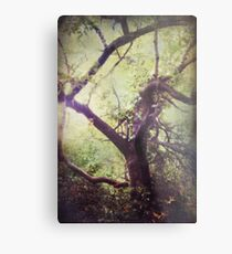 Arms That Reach For Me Wild and Free Metal Print