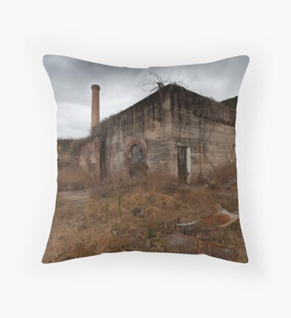 The electrical workshop Throw Pillow