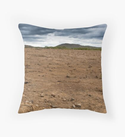 Termites & cow pads Throw Pillow