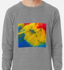 Arc En Ciel Sweatshirts Hoodies Redbubble