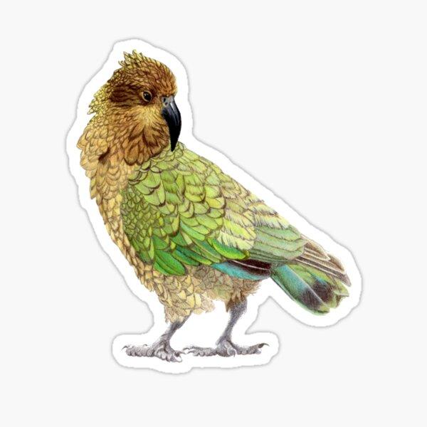 Kea Sticker