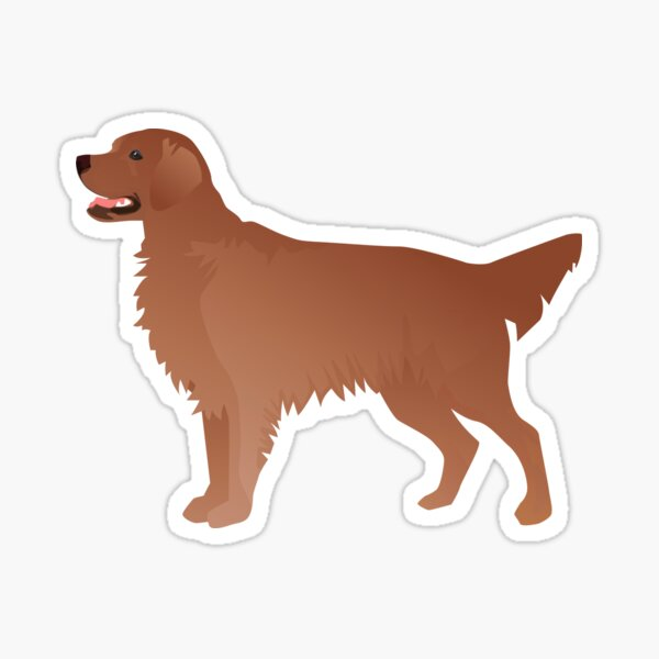 Red Golden Retriever and Flat-Coated Retriever Basic Breed Silhouette Sticker