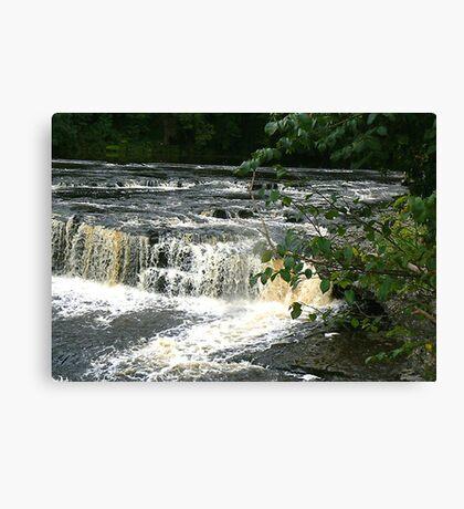 Aysgarth Falls - Yorks Dales. Canvas Print