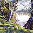 The Goulburn River - Upstream by Lynda Robinson