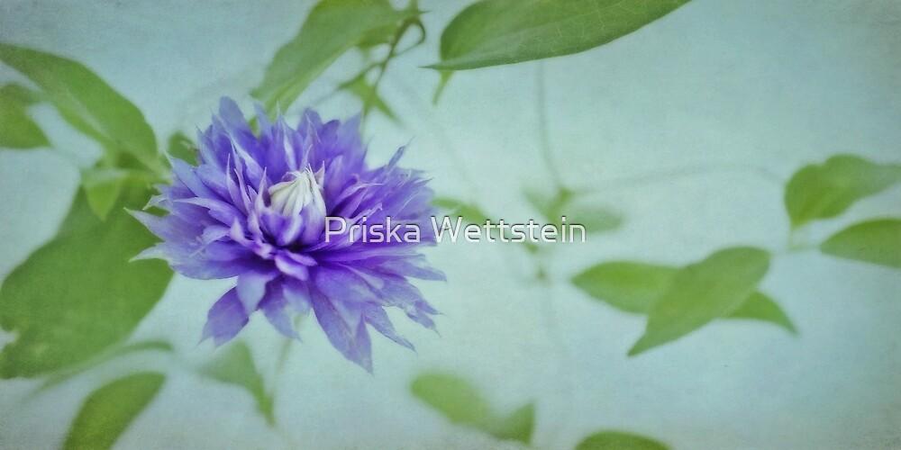 Feeling Blue by Priska Wettstein